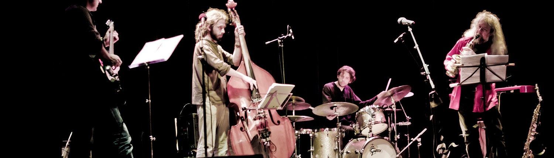 Banner_Markus Stauss, Jazz Musiker aus Basel